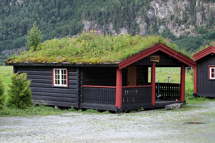 Унікальні зелені дахи в Норвегії (9)