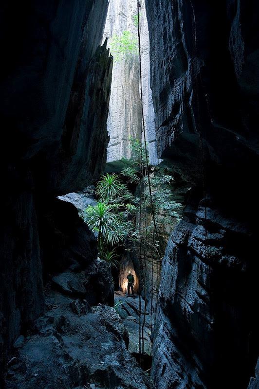 Кам'яний ліс Мадагаскару (11)