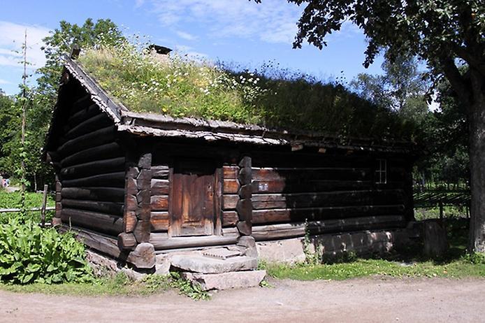 Унікальні зелені дахи в Норвегії (8)