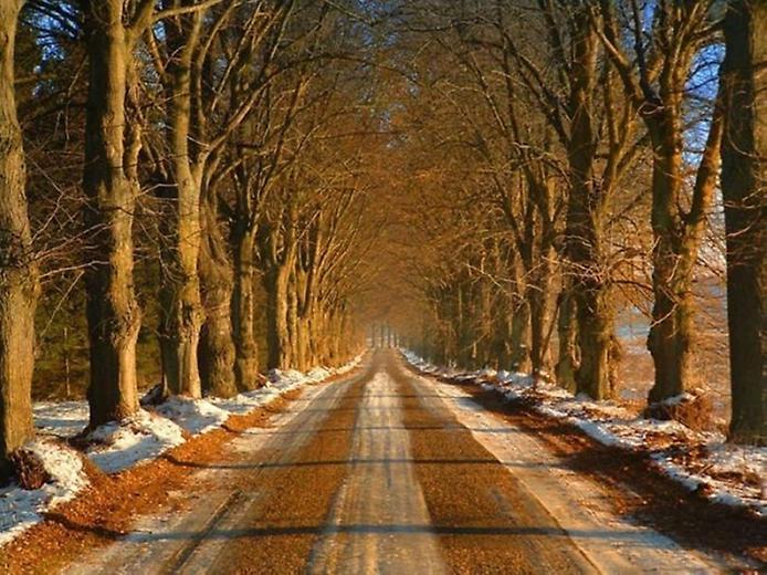 Фотографії найкрасивіших доріг (16)