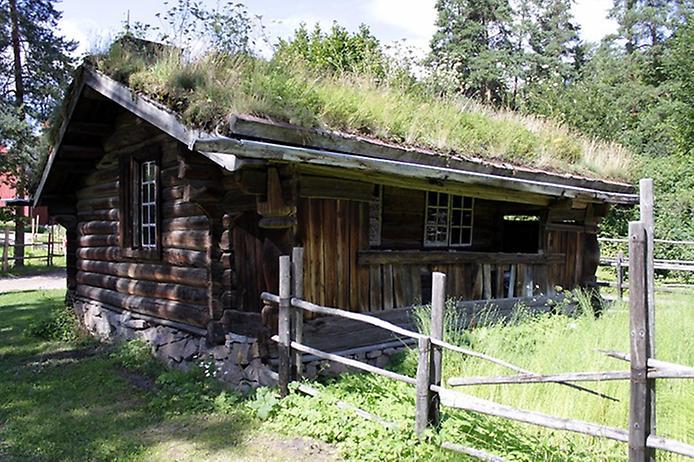 Унікальні зелені дахи в Норвегії (6)
