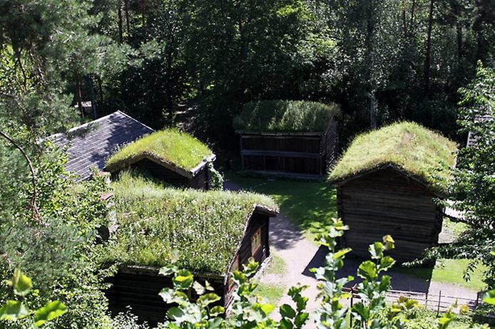Унікальні зелені дахи в Норвегії (5)