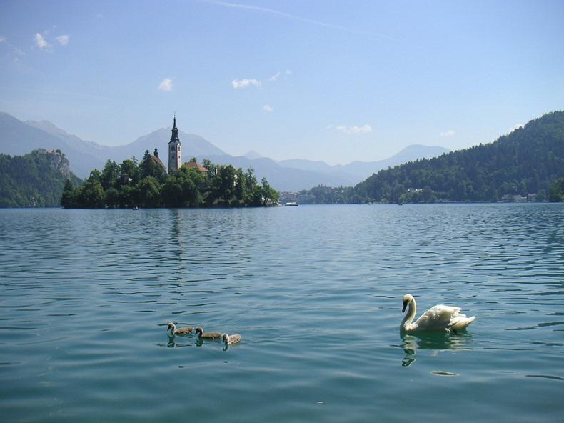 Церква на озері Блед в Словенії (6)