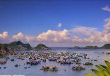 Плаваючі села острова Кат Ба у В'єтнамі (8)