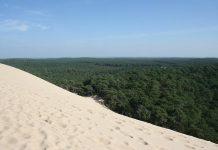 Пила: Неймовірна рухома дюна затоки Аркахон (5)