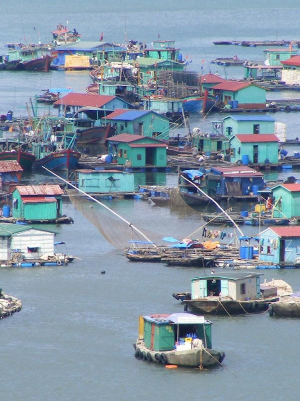 Плаваючі села острова Кат Ба у В'єтнамі (7)