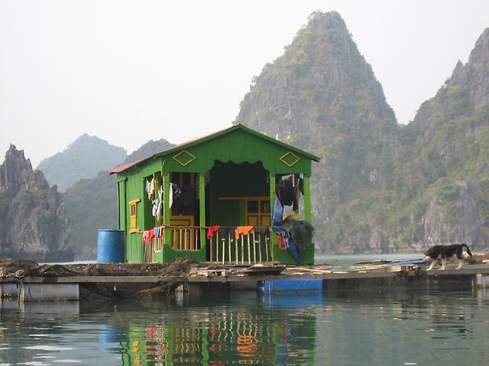 Плаваючі села острова Кат Ба у В'єтнамі (6)