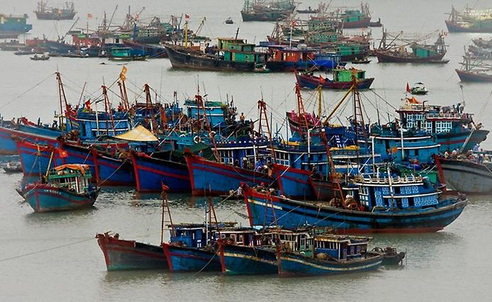 Плаваючі села острова Кат Ба у В'єтнамі (5)