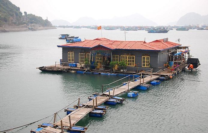 Плаваючі села острова Кат Ба у В'єтнамі (4)