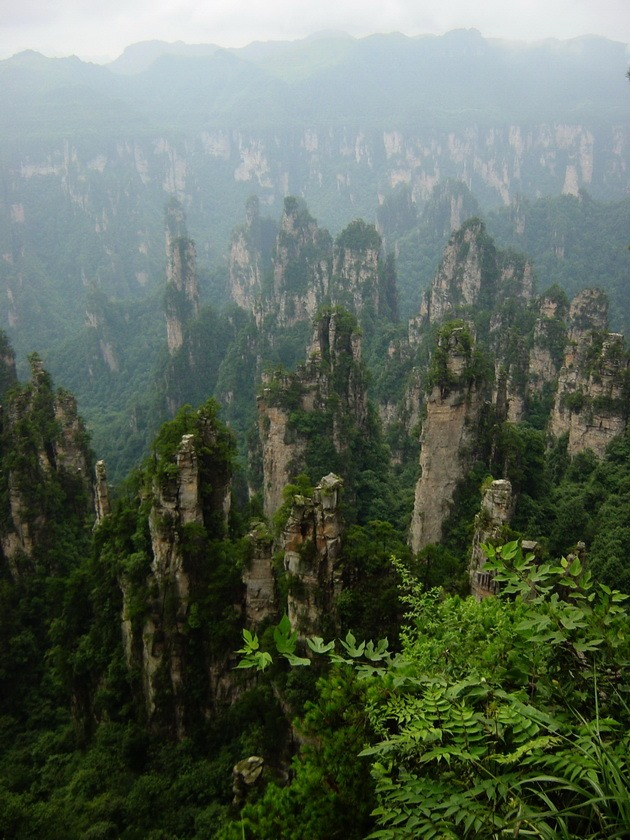 Національний парк Чжанцзяцзе (11)