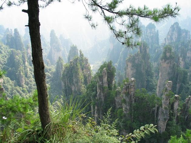 Національний парк Чжанцзяцзе (23)