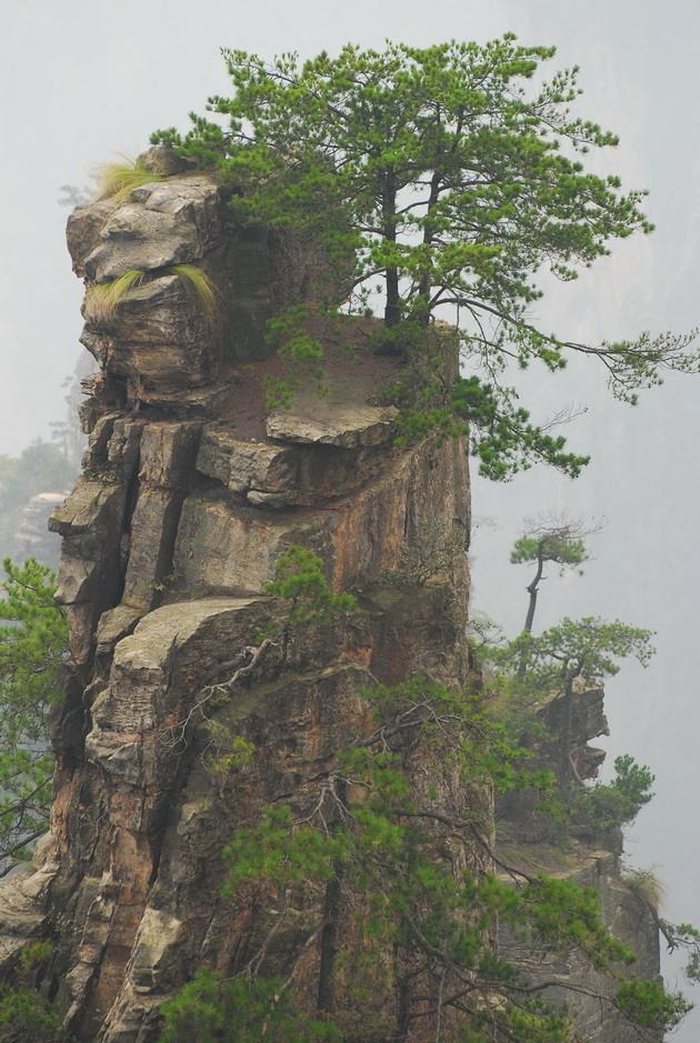Національний парк Чжанцзяцзе (16)