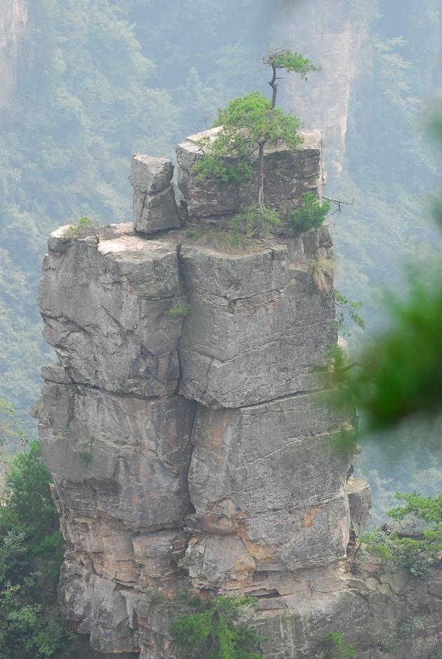 Національний парк Чжанцзяцзе (15)