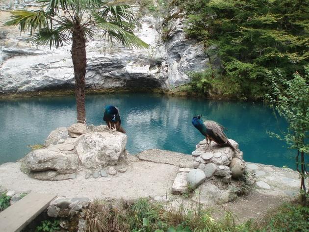 Синє озеро в Абхазії (4)