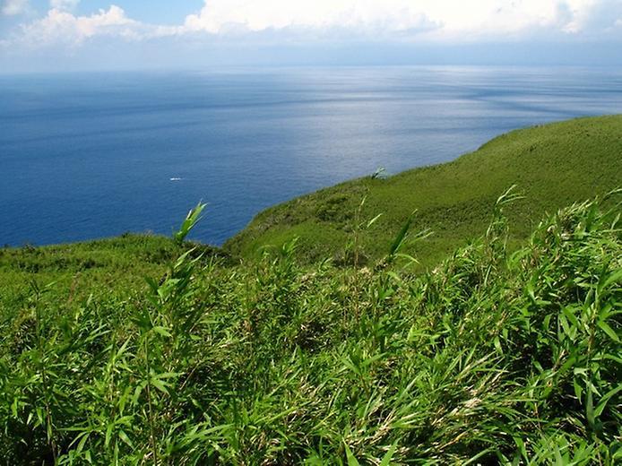 Найнезвичайніший вулканічний острів Японії. Аогашіма (3)