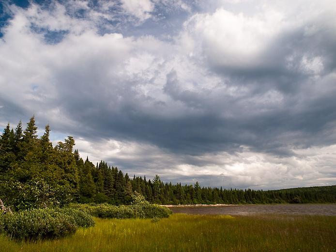 Провинциальный парк Алгонкин (3)