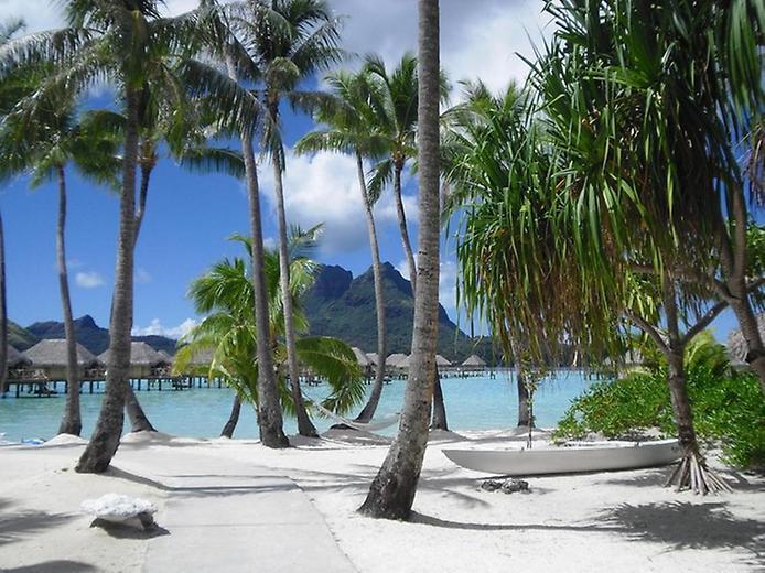 Рай на Землі. Дивовижні пляжі (7)