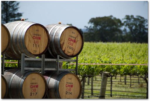 Долина Баросса - центр виноробства Австралії (5)