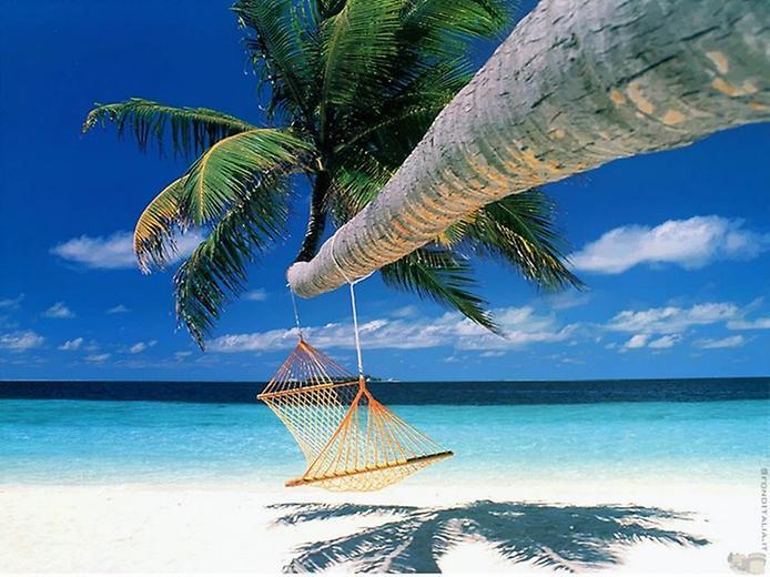 Рай на Землі. Дивовижні пляжі (5)