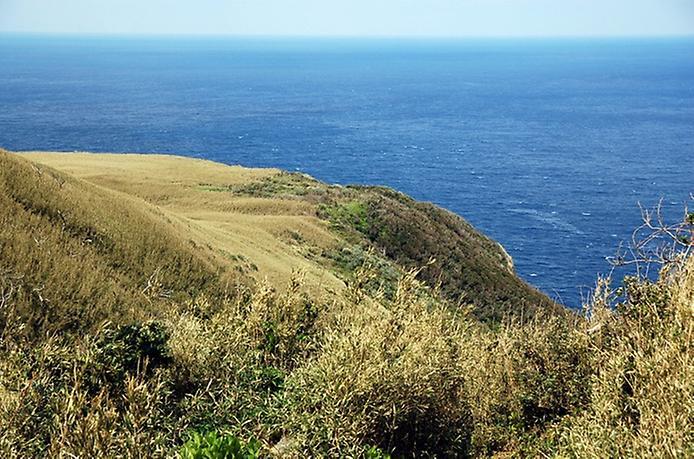 Найнезвичайніший вулканічний острів Японії. Аогашіма (4)