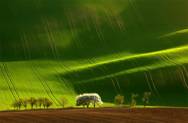 30 живописних пейзажів, які захоплюють та надихають. Найкращі пейзажі зі всього Світу (20)