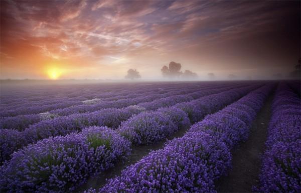 30 живописних пейзажів, які захоплюють та надихають. Найкращі пейзажі зі всього Світу (15)