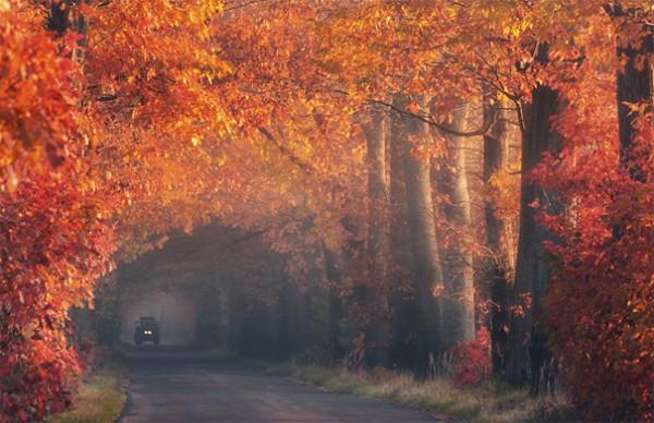 30 живописних пейзажів, які захоплюють та надихають. Найкращі пейзажі зі всього Світу (11)
