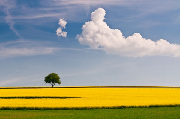 30 живописних пейзажів, які захоплюють та надихають. Найкращі пейзажі зі всього Світу (7)