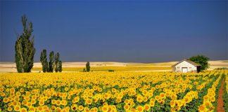 30 живописних пейзажів, які захоплюють та надихають. Найкращі пейзажі зі всього Світу (4)