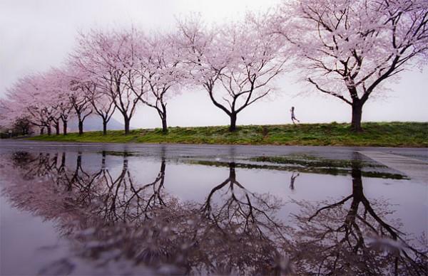 30 живописних пейзажів, які захоплюють та надихають. Найкращі пейзажі зі всього Світу (2)
