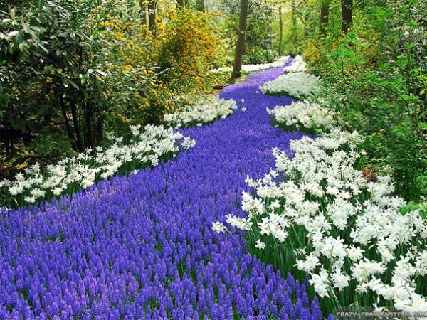 30 живописних пейзажів, які захоплюють та надихають. Найкращі пейзажі зі всього Світу (24)