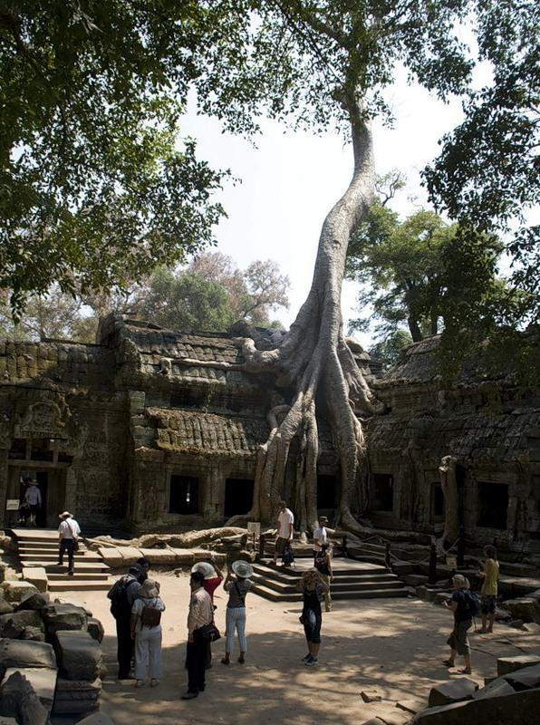 Ангкор (3)