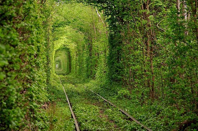 Тунель любові у місті Клевань. Україна