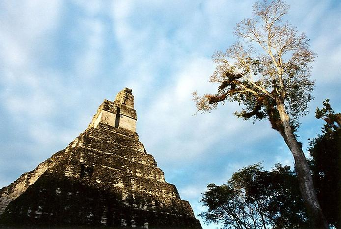 Тікаль - найбільше місто Майя (11)