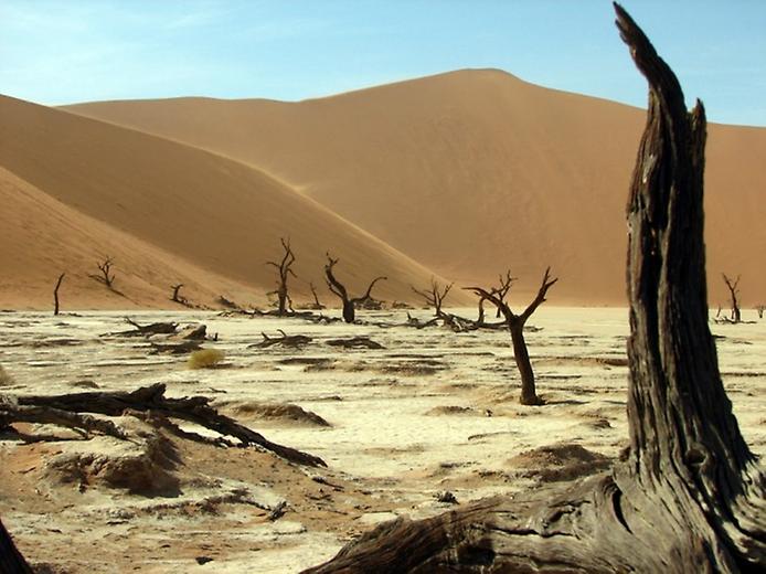 Плато Соссусфлей в пустелі Наміб (6)