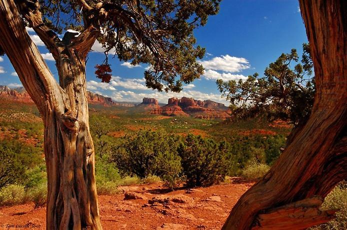 Червоні скелі Седона в Арізоні (7)