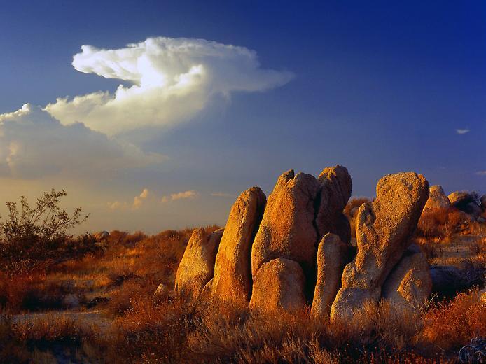 Пустеля Мохаве (9)