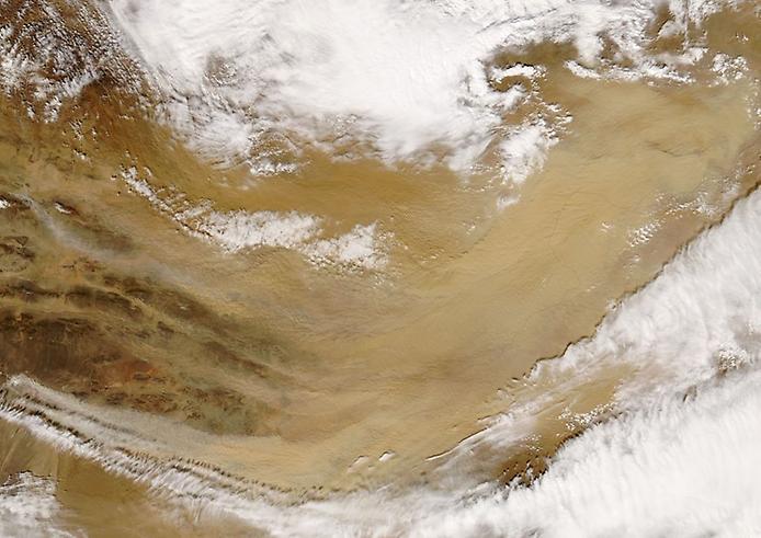 Пустеля Гобі. Найбільша пустеля Азії (3)