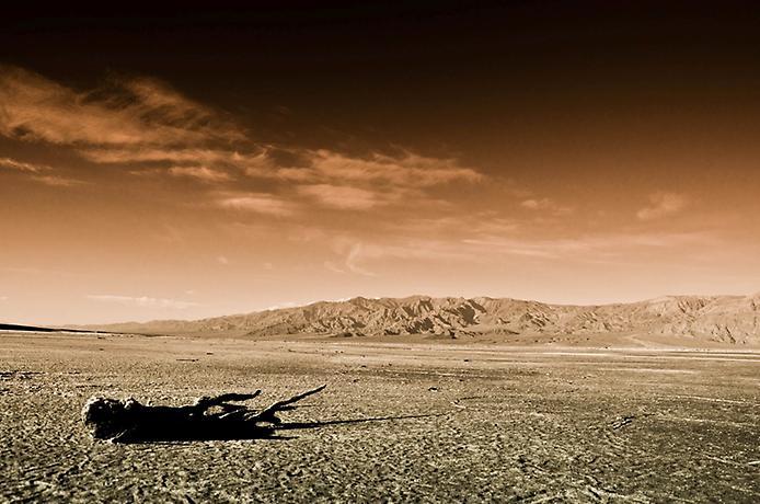 Пустеля Мохаве (4)
