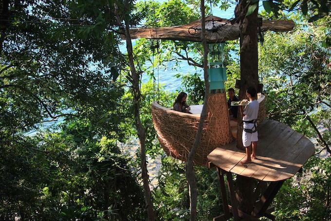 Ресторан на деревах в Таїланді (5)