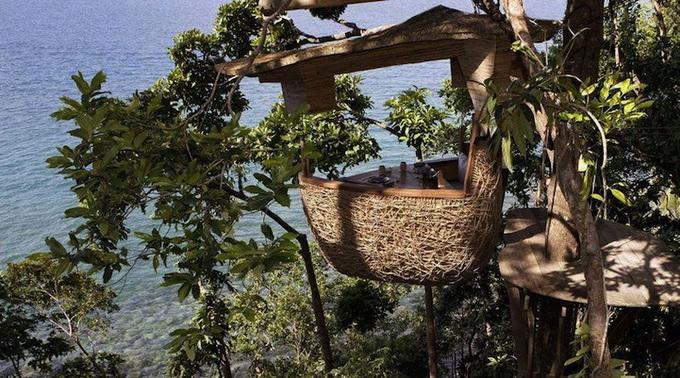 Ресторан на деревах в Таїланді (4)