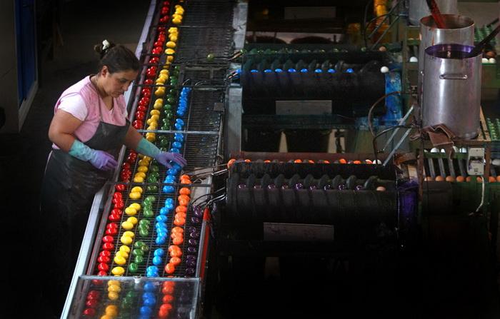 Німеччина. На фабриці в Танхаузене щодня фарбують близько 180 000 зварених круто яєць
