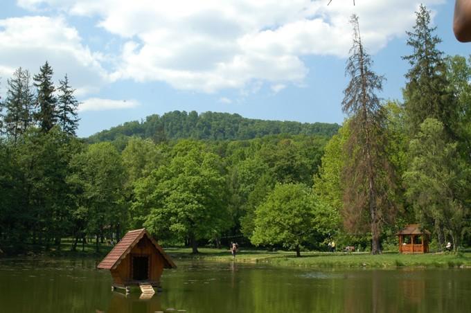 Вид на ставок і парк навпроти замку Шенборнів