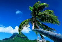 Якщо є на землі рай, то, напевно, острови Бора-Бора - одне з тих місць (10)