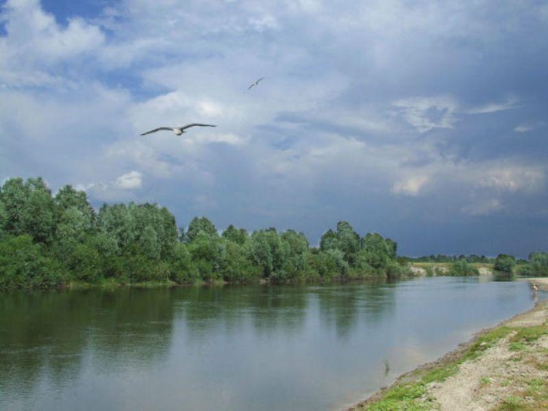 річка Сейм фото: Володимир