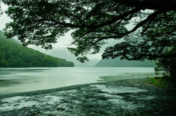 Вид під час дощу: