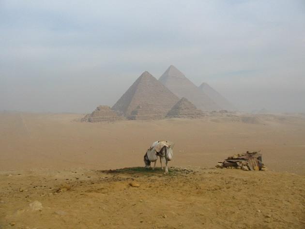 Піраміди Гізи та безмовний сфінкс (13)