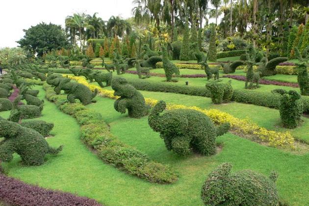 Тропічний парк Нонг Нуч (15)