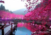 Дивовижні фотографії пейзажів з усього світу (1)