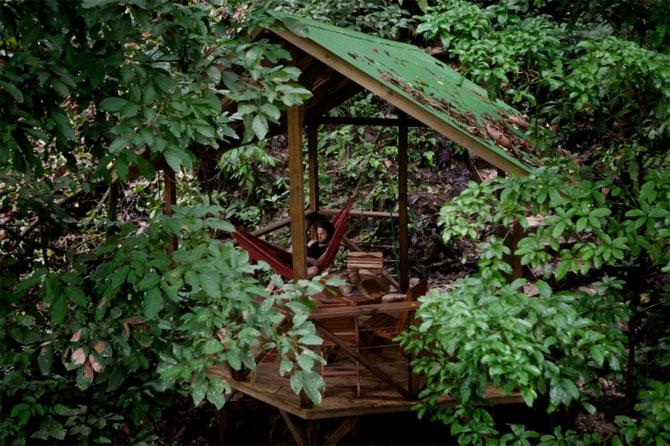 Дивовижне село з будинками на деревах (31 фото) (10)
